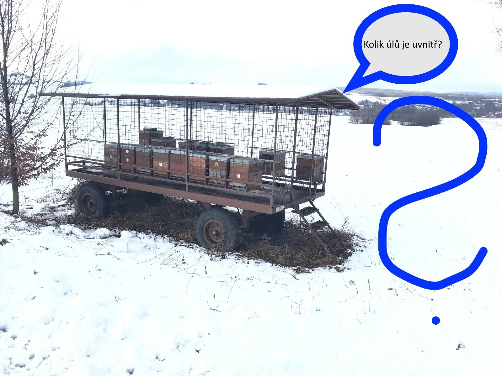 Zjišťovačka - Lišky - únor 2021